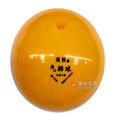 南铁气排球(120)